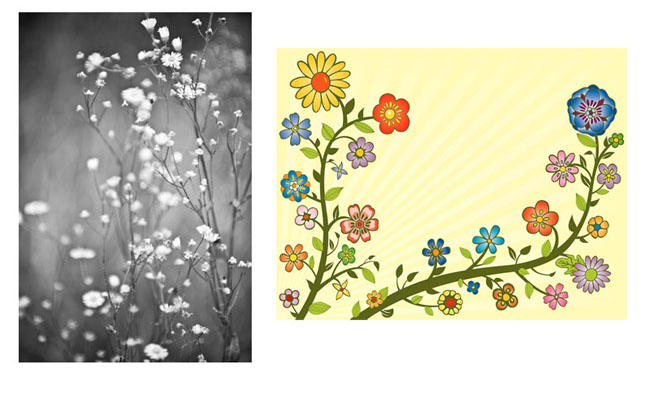 Combining Photos and Illustrations to Make Your Projects Shine