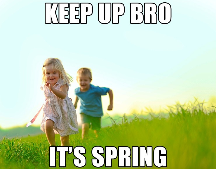 The Memes of Spring