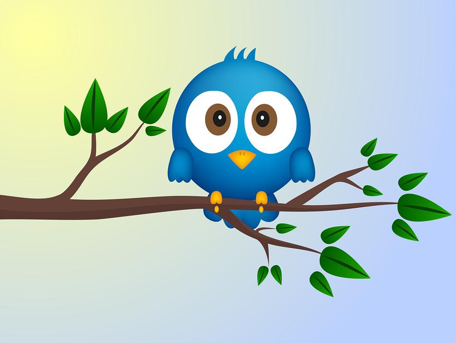 Blue bird | PiXXart