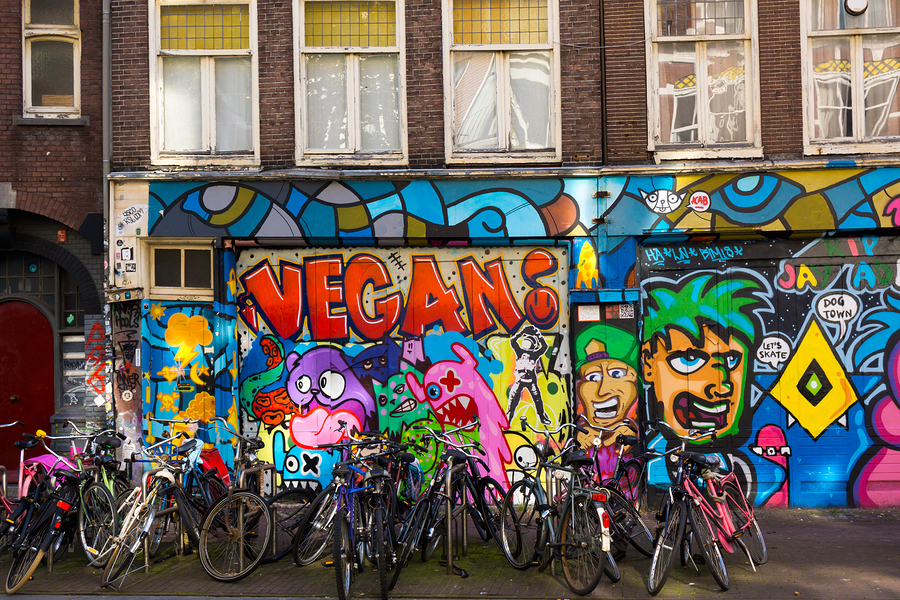 Image of bikes in front of graffiti by toxawww   The lively colors and artistry of Amsterdam's street art scene is one of the city's benchmarks. It's also one of the most pleasant discoveriesto come across on a bike tour!